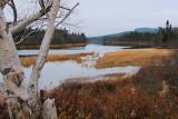 Terra Nova River 004