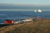 Iceberg 2008 040Pouch Cove, NL