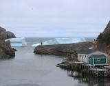 Iceberg 2008 067Quidi Vidi Village