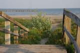 Path to the Gulf