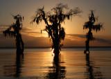 Lake Verret Sunset