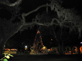 Christmas in the Oaks