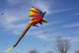 March 14th, 2010 - Austin Kite Fest - 5506.jpg