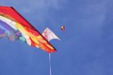 Austin Kite Fest - 5539.jpg