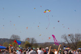 Austin Kite Fest - 5556.jpg