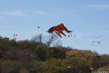 Austin Kite Fest - 5582.jpg