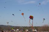 Austin Kite Fest - 5585.jpg