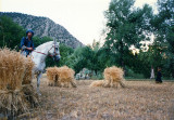 With haystacks in Kalash