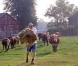 Mealtime on a Farm