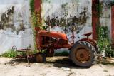 12072006-La Luz Cacao Plantation-Z-018.jpg