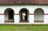 12072006-La Luz Cacao Plantation-Z-175.jpg