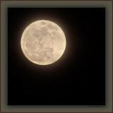 Perigee Moon 2010