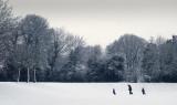 a walk in the park - Colin
