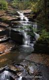 Fillmore Glen Gorge