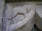 Horse detail, The Mint, Carlingford