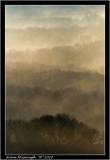 Porkellis Moor.jpg