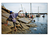 Fish Market Part 4