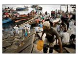 Fish Market Part 5
