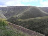 1_1_Paramo near Quito.JPG