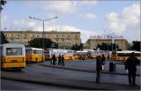 Valetta, bus terminal #14