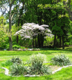 View of Kuser Park