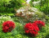 Kuser Mansion Garden