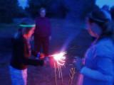 The backyardfireworks show