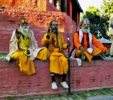 Hindu ascetics