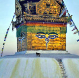 Swayambhunath (The Monkey Temple)