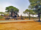 Bullock carts and temples