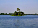 Lake Inya by the University of Rangoon