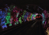 Sightseeing Tunnel ride