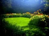 Rainbow Daylily Garden