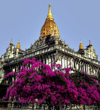Most beautiful temple