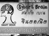 smart brain.jpg