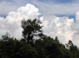 brush clouds.jpg