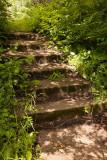 Steps at Kapkigiwan