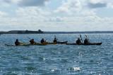 Sur le golfe du Morbihan en semi-rigide - MK3_9607 DxO Pbase.jpg