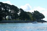 Sur le golfe du Morbihan en semi-rigide - MK3_9628 DxO Pbase.jpg
