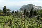 33 Vacances a Capri 2009 - MK3_5094 DxO Pbase.jpg
