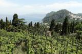 34 Vacances a Capri 2009 - MK3_5095 DxO Pbase.jpg