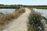 Sur le chemin côtier entre Saint-Armel et Lasné et les marais salants de Lasné