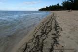 2 weeks on Mauritius island in march 2010 - 132MK3_7953_DxO WEB.jpg