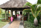2 weeks on Mauritius island in march 2010 - 167MK3_7988_DxO WEB.jpg