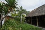 2 weeks on Mauritius island in march 2010 - 223MK3_8046_DxO WEB.jpg