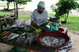 2 weeks on Mauritius island in march 2010 - 399MK3_8230_DxO WEB.jpg