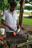 2 weeks on Mauritius island in march 2010 - 402MK3_8233_DxO WEB.jpg