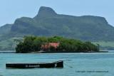 2 weeks on Mauritius island in march 2010 - 505MK3_8349_DxO WEB.jpg