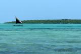 2 weeks on Mauritius island in march 2010 - 519MK3_8363_DxO WEB.jpg