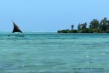 2 weeks on Mauritius island in march 2010 - 521MK3_8365_DxO WEB.jpg